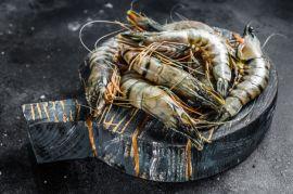 Shrimps Head On
